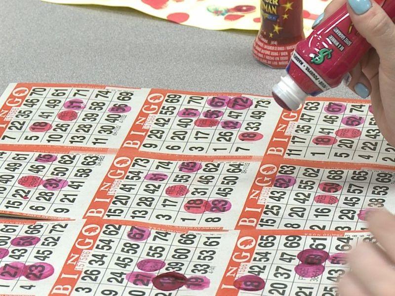 Play Free Bingo Games Online at Online gambling